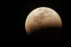 It Begins (baldheretic) Tags: eclipse lunar 2019 fullmoon bloodmoon moon wolfmoon blood red superbloodwolfmoon