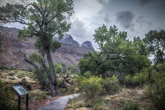One of the many paths in Zion National Park (donnieking1811) Tags: utah springdale zionnationalpark nationalpark zion park path sign landscape outdoors trees shrubs bushes mountains sky clouds hdr canon 60d lightroom photomatixpro