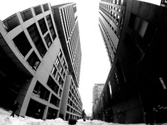Rue Shannon in Winter (Montreal) (MassiveKontent) Tags: streetphotography montreal bw contrast city monochrome urban blackandwhite streetphoto metropolis montréal quebec photography bwphotography streetshot architecture building noiretblanc blancoynegro griffintown gopro road winter snow snowfall absoluteblackandwhite frozen mono cold