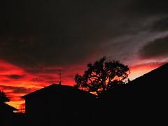 #sunset #landscape ##luce&ombre #light #lumixgx80 #micro4/3 #dark #magic (ArmandoFX) Tags: sunset landscape luce light lumixgx80 micro4 dark magic