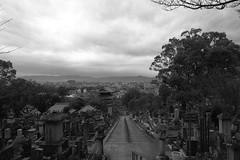 cloudy (ababhastopographer) Tags: 街 kyoto kurodani cemetery winter acors cloud sky skyline konkaikōmyōji graytones city 京都 黒谷 金戒光明寺 墓地 冬 曇天 雲 空 稜線 階調