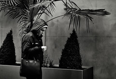Planter Box (Bury Gardener) Tags: burystedmunds bw blackandwhite britain monochrome mono 2018 england eastanglia uk people peoplewatching folks nikond7200 nikon suffolk streetphotography street streetcandids snaps strangers candid candids arc thearc