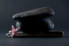 Hard light?... (Raquel Borrrero) Tags: stone black flower pink light hardlight softlight doubt duda equilibrio balance piedra negro rosa luzdura luzsuave