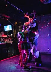 8M5A3704-17 (loboloc0) Tags: furries frolicparty frolic party furry club dance suit suiter fur fursuit dj sf san francisco indoor people costume performer animal blur portrait