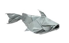 Pangasius (folding~well) Tags: origami paper folding catfish fish pangasius shark sealife