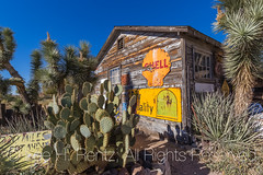 Hackberry General Store along Historic Route 66 in Arizona (Lee Rentz) Tags: america arizona dustbowl getyourkicksonroute66 hackberry hackberrygeneralstore historicroute66 joshuatree mainstreetofamerica northamerica route99 steinbeck thegrapesofwrath usroute66 us66 willrogershighway americanwest americana artifacts building cactus fun goodtimes highway historic history horizontal icon iconic memorabilia memories memory nationalscenicbyway nostalgia nostalgic old past road roadtrip route sentiment sentimental shop signs store themotherroad thewest time transportation usa