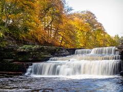 Aysgarth Lower Falls (Idlefrog Photo) Tags: woodland autumnfall yorkshire waterfall