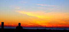 oteando el amanecer de Reyes.- (angelalonso4) Tags: canon eos 7d mark ii tamron 16300mm f3563 di vc pzd b016 ƒ50 660 mm 1200 200 amanecer reyes mar sea azul blue mediterraneo orange naranja silueta aves old yellow sky shot capture colours perspectiva luces sombras contraluz delightful lightscape golden