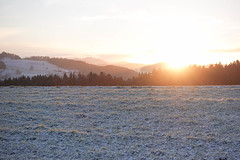 First morning walk with my ultra-light Christmas present (balu51) Tags: morningwalk morning wintermorning cold sunrise snow landscape rollinghills hills forest sky sun white black winter januar 2019 copyrightbybalu51