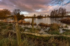 Two up , one down. (Pete Cartwright) Tags: nikon d7200 sigma 1020mm f35 cossington landscape lakes leicestershire water cloud grass trees