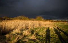 Storm Passed (music_man800) Tags: storm stormy pass overhead weather rain cloud cloudy mood moody atmospheric atmosphere wet light lighting spectacular pretty wells next sea norfolk coast uk united kingdom march afternoon evening late bushes marsh warham greens shadow shadows long hike walk nature natural canon 700d adobe lightroom creative edit photography scene landscape