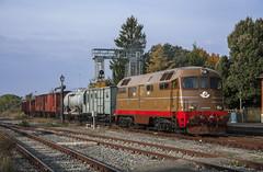 FS D 342.4010 Asciano 30/10/2010 (stefano.trionfini) Tags: train treni bahn zug fs d342 toscana italia italy