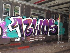"NYG_CleanTrains_312 • <a style=""font-size:0.8em;"" href=""http://www.flickr.com/photos/79474556@N08/46944372021/"" target=""_blank"">View on Flickr</a>"