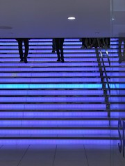 Blue lines and silhouettes, NYC 2019 (scotthughesphoto) Tags: explore walk walkabout iphoneography color art newyorkcity nyc stairs blue colors documentary street