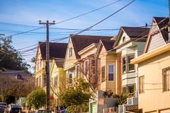San Francisco Lines (Thomas Hawk) Tags: america bayarea bernal bernalheights bernalheightshill bernalhill bernalwood california sfbayarea sanfrancisco usa unitedstates unitedstatesofamerica sfflickr sfflickrmeetup sfflickrmeetup01192013