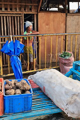 Filipino porter and blue flatbed trolley. Carbon Markete-Cebu City-Philippines. 0699 (rweisswald) Tags: carbonmarket filipino man porter carrier vendor seller salesman merchant trader dealer wholesaler retailer toothless takingcare lookingafter bluepainted wood woodenwall yellowmetalfence structure flatbed trolley handcart threewheeled folded blueumbrella vegetable ginger zingiberofficinale zingiberaceae rhizome spice container plasticbox plastic bigsack shop store stall stand farmersmarket marketplace publicmarket junk food aliment cebucity centralvisayas philippines