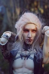 Travel in the woods 4 (Nattmaran) Tags: bjd doll black metal varg blond simply divine thomas loongsoul