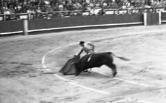Matador 2 (Arne Kuilman) Tags: lostandfound zimmermans photos photonotmine scan v600 epson holiday found gevonden bullfighting bullfighter arena past even spain bull matador
