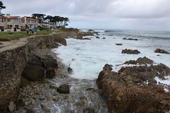IMG_9783 (mudsharkalex) Tags: california pacificgrove pacificgroveca
