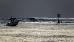 Polynésie 2019 - Tahiti (Valerie Hukalo) Tags: vague taapuna tahiti punaauia hukalo valériehukalo polynésiefrançaise frenchpolynesia océanpacifique pacificocean polynesia archipeldelasociété archipel island île océanie polynésie françaisefrench polynesiaocéan pacifiquepacific oceanfrancearchipel de la société