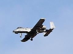 QE3A9772 (TravelBear71) Tags: pimaairspacemuseum museum tucson arizona planes airplane warplanes