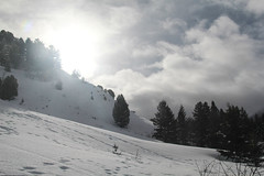 Morning on the Wood Canyon Trail (RPahre) Tags: bridgertetonnationalforest jackson wyoming contrejour winter snowshoeing clouds
