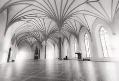 The guard (E-C-K ART) Tags: poland polska malnork sopot tricity trojmiasto palace pier black white architecture harbout castle ballroom pillar rooftop