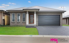 66 Bluebell Crescent, Spring Farm NSW