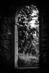 The Chapel window (tonguedevil) Tags: outdoor outside countryside spring nature garden nursery gardens plants window arch chapel derelict bw teesdale