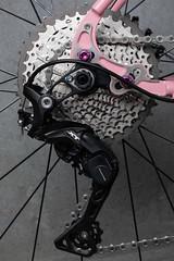 4U0A7701.jpg (peterthomsen) Tags: coveypotter scrambler steel pink nahbs caletti