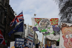 To Insanty and Beyond... (lazy south's travels) Tags: london england english britain british uk politics brexit urban protest banner theresamay eu europeanunion democracy protester