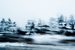 345/365@50 (Ruff Edge Design) Tags: rain multipleexposure icm intentionalcameramovement incamera trees monochrome abstract lensbaby velvet56