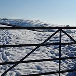 GATE-VIEW thumbnail