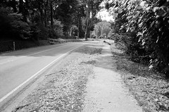 Mount Dandenong Tourist Road... (Matthew Paul Argall) Tags: canonsnappy20 fixedfocus 35mmfilm blackandwhite blackandwhitefilm kentmere100 100isofilm road street mountdandenongtouristroad
