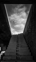 Staircase To Sky (panos_adgr) Tags: nikon d7200 monochrome photography bw stairs opening frame in clouds sky building abandoned spiritual center piraeus light morning bird