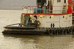 H Bit (thetrick113) Tags: vikingtugandbarge tugboatfredjohannsen fredjohannsen tugboat hudsonriver river crane newburghbeaconferry ferrydock sonyslta65v hudsonvalley hudsonhighlands hudsonrivervalley hudsonrivertugboat marineconstruction vessel workingvessel winter 2019 fendering newburghnewyork barge deckbarge