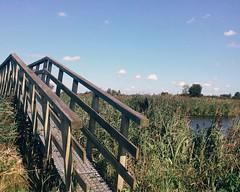 Zaanstad (Courtney Darling, Older Adventures) Tags: travel windmill backpacking europe netherlands holland zaanseschans zaanstad