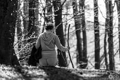 Le bâton du pèlerin (Philippe Bélaz) Tags: nb balades bâton forêts noir noirblanc pèlerin