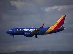 N421LV Boeing 737-7H4 Southwest Airlines (corkspotter / Paul Daly) Tags: n421lv boeing 7377h4 w b737 32452 1040 l2j a50064 swa wn southwest airlines 2001 20020205 klax lax los angeles