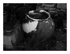 * (Daniel Espinoza) Tags: bw kodaktmax400 film film120 mediumformat mexico danielespinoza fineart filmphotography analogica analogphotography conceptual