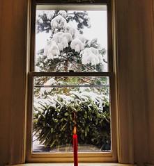 inside looking out (ekelly80) Tags: dc washingtondc january2019 winter snurlough snow snowstorm shutdown trumpshutdown inside window view candle cozy casakeis