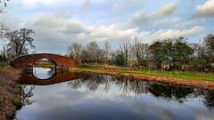 Rentons Bridge - Rowel Walk (Paul Thackray) Tags: yorkshire riponcanal rentonsbridge rowelwalk reflections 2019
