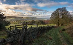 Country lane (Phil-Gregory) Tags: nikon countryside countrylife lane d7200 tokina1120mmatx tokina wideangle ultrawide superwide green bamfordedge peakdistrict derbyshire
