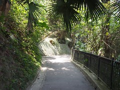 Walking counterclockwise along Lugard Rd (procrast8) Tags: hong kong island china victoria peak mount austin lugard road
