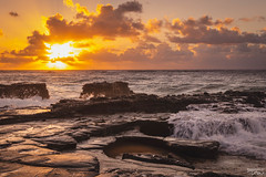 Oahu Sunrise (tcmealy) Tags: oahu sunrise beach waves hawaii travel nikon tamron