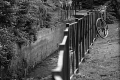 Catania (carmeloserrano#1) Tags: catania bianco nero black white bn bw monocromo monochrome bici bicicletta bike bikecycle cycle acqua water ringhiera railing ferro iron canon eos stm dpp carmelo serrano carmeloserrano