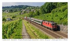 Re 420 + Aem 940 001 - Bossière (CC72080) Tags: re420 re44 aem940 bossière locomotive lokomotive train essai zug extrafahrt prose vaud suisse