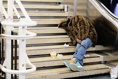 New York Penn Station (dangaken) Tags: pennsylvaniastation pennstation nyp train travel newyorkpennstation streetphotography travelbytrain amtrak lirr longislandrailroad madisonsquaregarden msg midtownmanhattan midtown manhattan street eastrivertunnels njtransit newjerseytransit trainstation depot nyc newyorktrain commuter commutertrain transit publictransit capitaloftheworld alphaworldcity ny newyorkcity bigapple empirestate march2019 fujifilmxt2 fujixt2 fuji fujinon fujifilm eastcoast usa unitedstates america american metropolitan newyorkmetropolitanarea wfat waitingforatrain platform concourse station traveler travelers commute subwaystation subway mta metropolitantransitauthority newyorkcitysubway sub metronorthrailroad metronorth newhavenline harlemline blackman homeless furcoat emptybeer stairs sleep sleeping homelessman