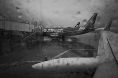 departure in rain (peaceblaster9) Tags: airport departure rain airplane onboard window blackandwhite bnw bw blackwhite sanjose california ricoh ricohgr2 gr2 空港 飛行機 出発 雨 雨雲 空 窓 白黒 monochrome モノクロ モノクローム 旅 travel
