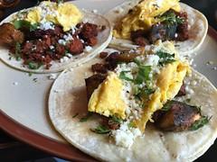 Desayunos tacos at Los Camarades (htomren) Tags: phonepics food tacos breakfast brunch loscamarades